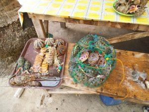 海鮮物のアップ写真