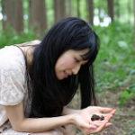 松ぼっくりを観察する女性
