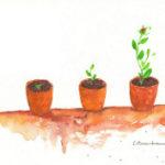 植木の成長過程の絵