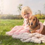 大型犬を守る幼女
