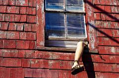 窓から片足だけはみ出ている