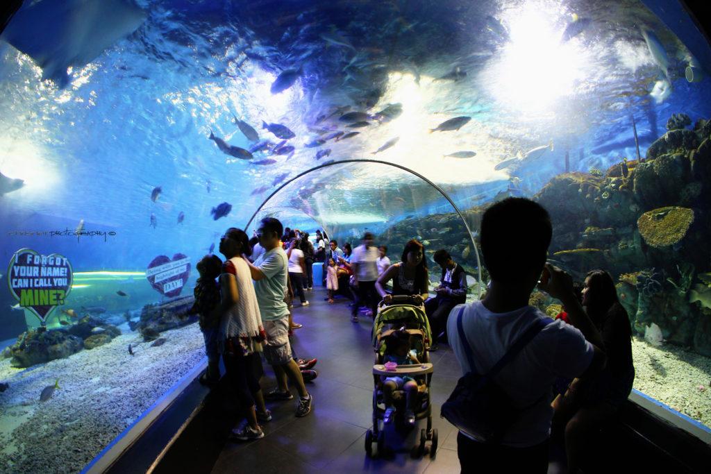 マニラオーシャンパークの海底トンネル