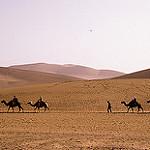 写真はシルクロード分岐点敦煌の遊牧民の民