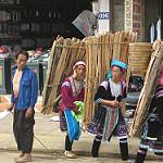 木枝を運ぶ女性たち