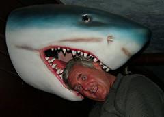 サメに頭を噛み付かれている人間のトリック写真