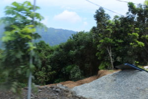 バギオの山の風景