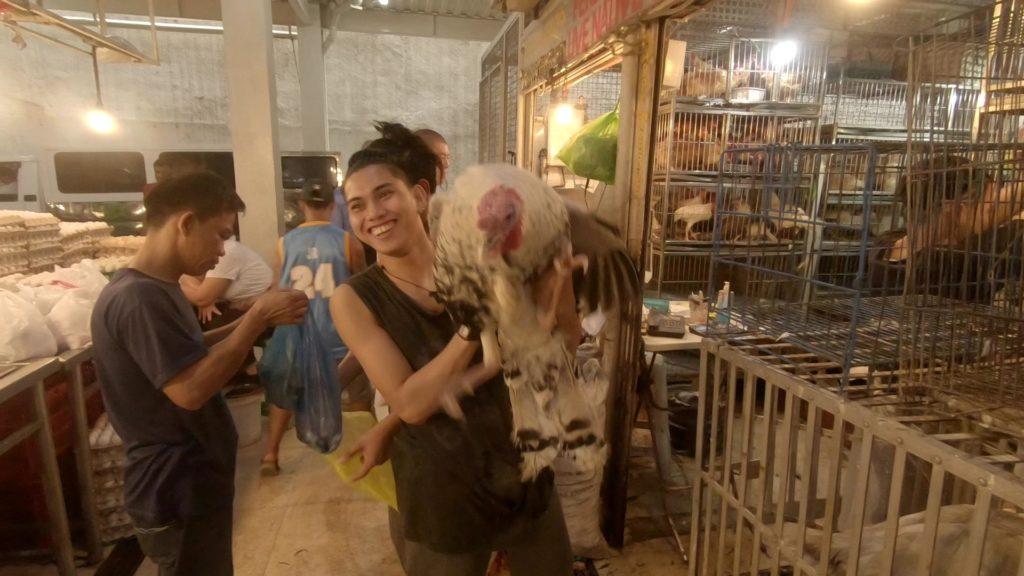 大きな軍鶏を抱える職場店員