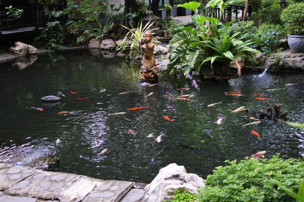 日本風の庭園