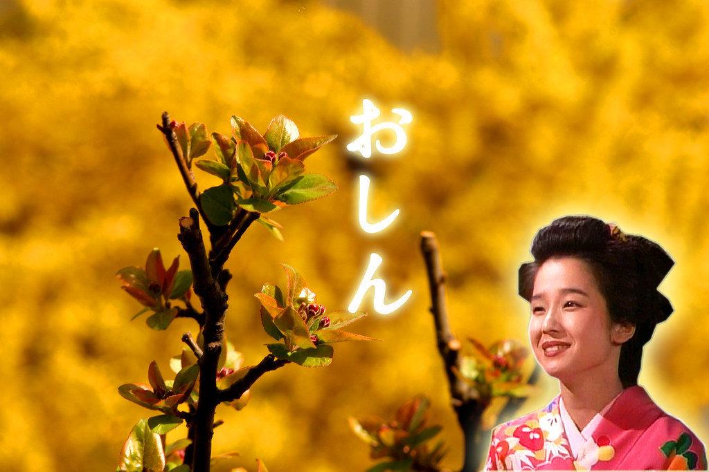 日本版おしんのポスター