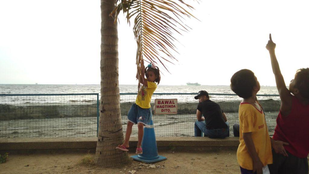 マニラ湾の前の木の枝を使ってブランコ遊びをする小さな女の子
