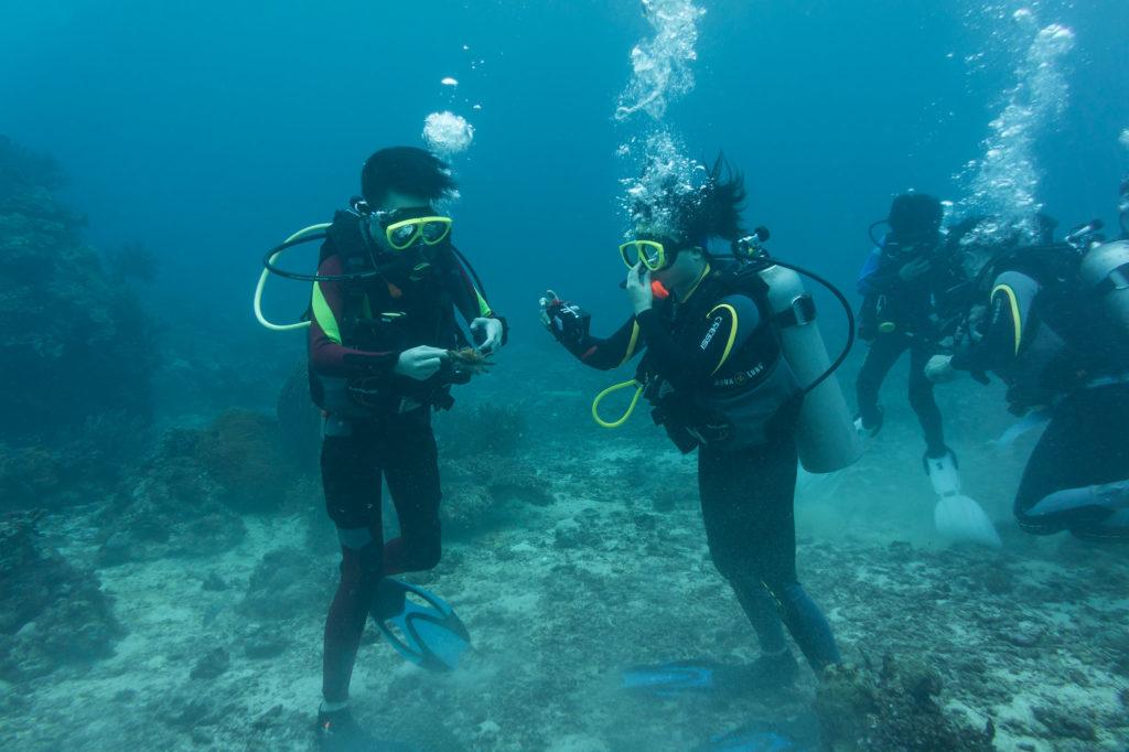 ボラカイの海中